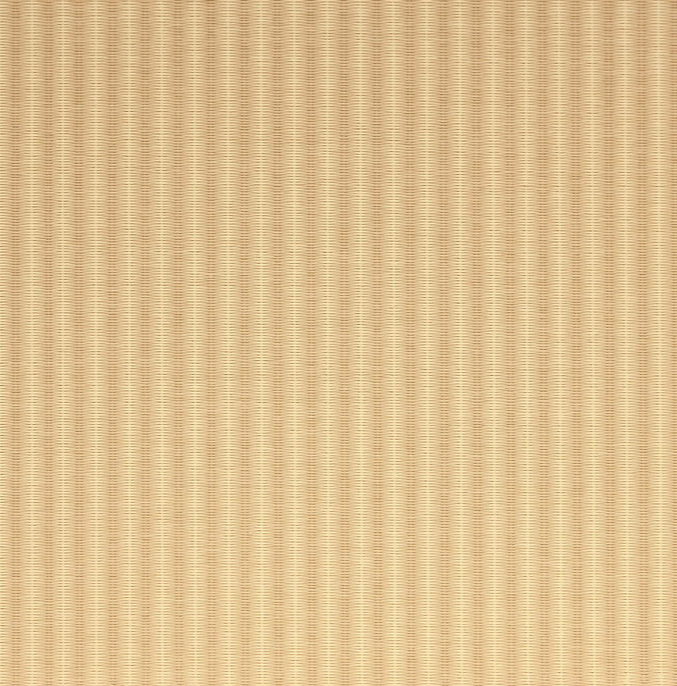 乳白色×白茶色(にゅうはくしょく×しらちゃいろ)